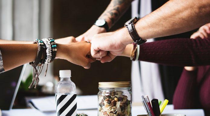 las mejores ideas de negocio para 2019 el loco de la colina